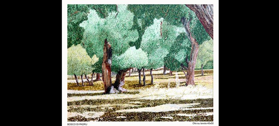 Bosco di Padru
